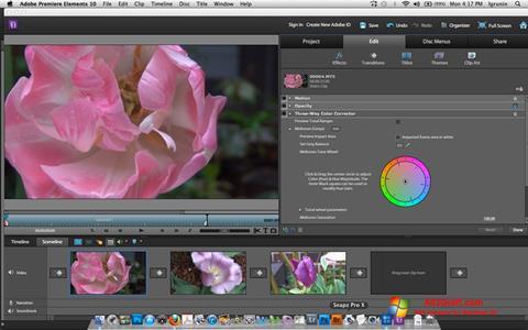 Képernyőkép Adobe Premiere Elements Windows 10