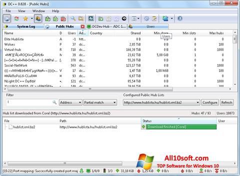 Képernyőkép DC++ Windows 10