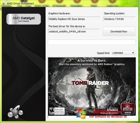 Képernyőkép AMD Driver Autodetect Windows 10