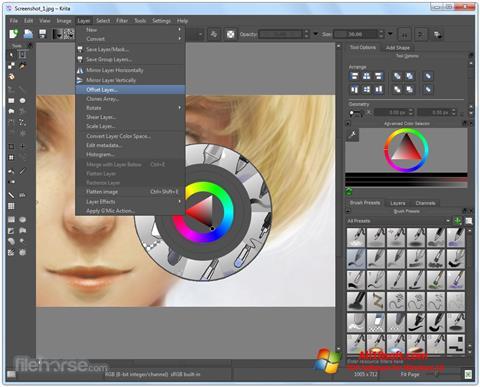 Képernyőkép Krita Windows 10